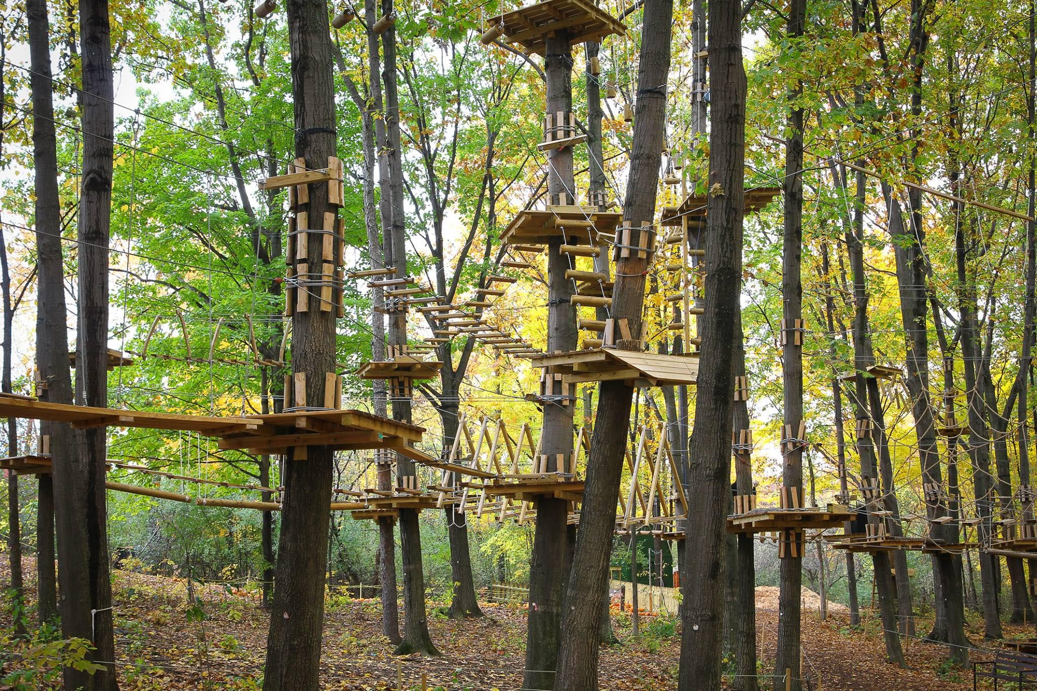 Adventure Park Frankenmuth