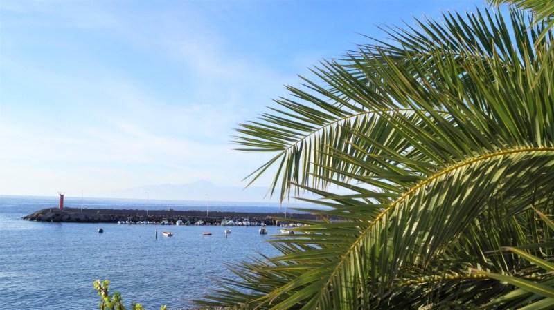 So sieht auf Gran Canaria der Dezember aus