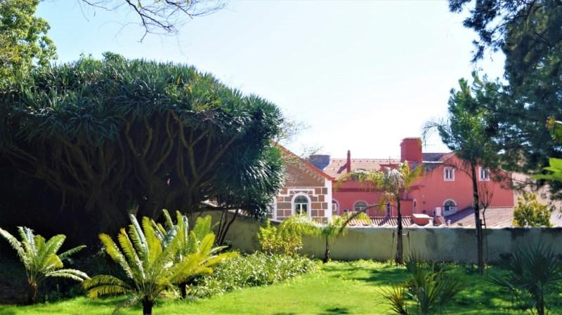 botanische Garten Lissabon