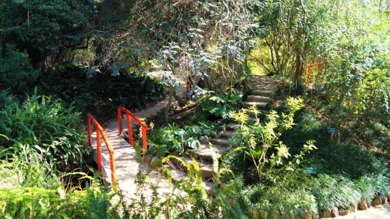 Der botanische Garten von Lissabon