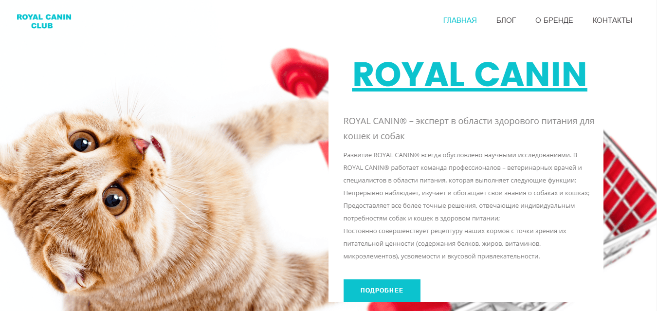 royal-canin club, сайт-визитка с блогом