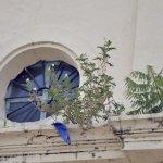 Kathedrale in der Hauptstadt renovierungs- bedürftig