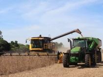 177 Millionen US $ weniger im Agrarsektor