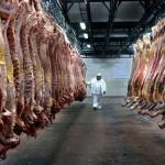 Spitzenerlöse beim Fleischexport in die EU