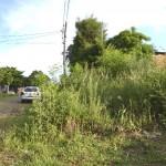 Geldstrafen für nicht gepflegte Grundstücke