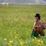 Alt, älter, am ältesten: Die Lateinamerikaner