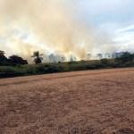 Naturschutzgebiet in Flammen