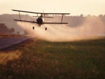 Die Pestizide sind nicht unverzichtbar