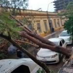 Schwere Sturmschäden in der Hauptstadt von Paraguay
