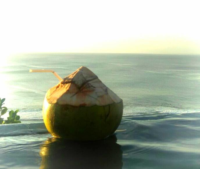 Eine harte Nuss für die Nachhaltigkeit