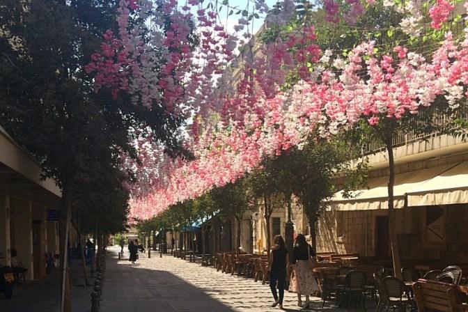 Foto Sommerschmuck in Jerusalem