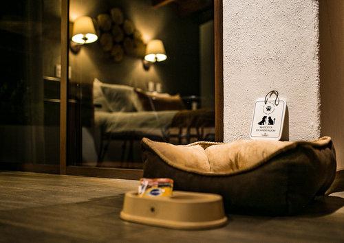 Hoteles pet friendly en México en Wokii