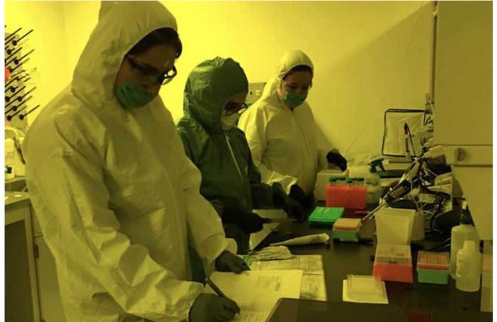 UNAM prueba COVID en Wokii