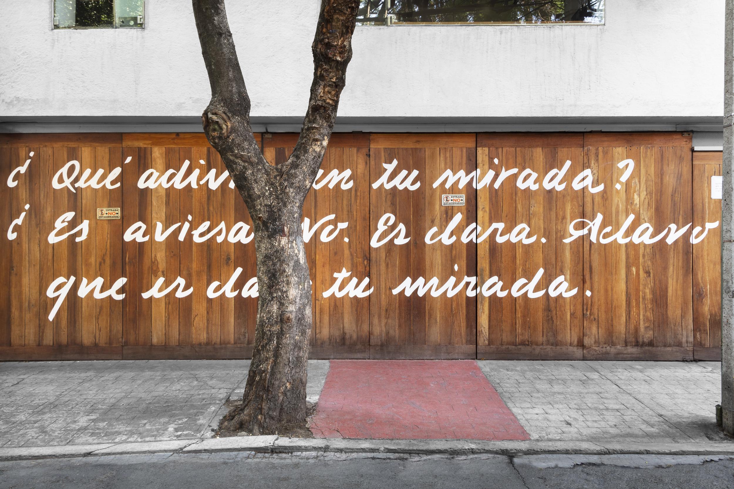 """Reabre la galería kurimanzutto de la Ciudad de México con la exposición """"Siembra"""""""