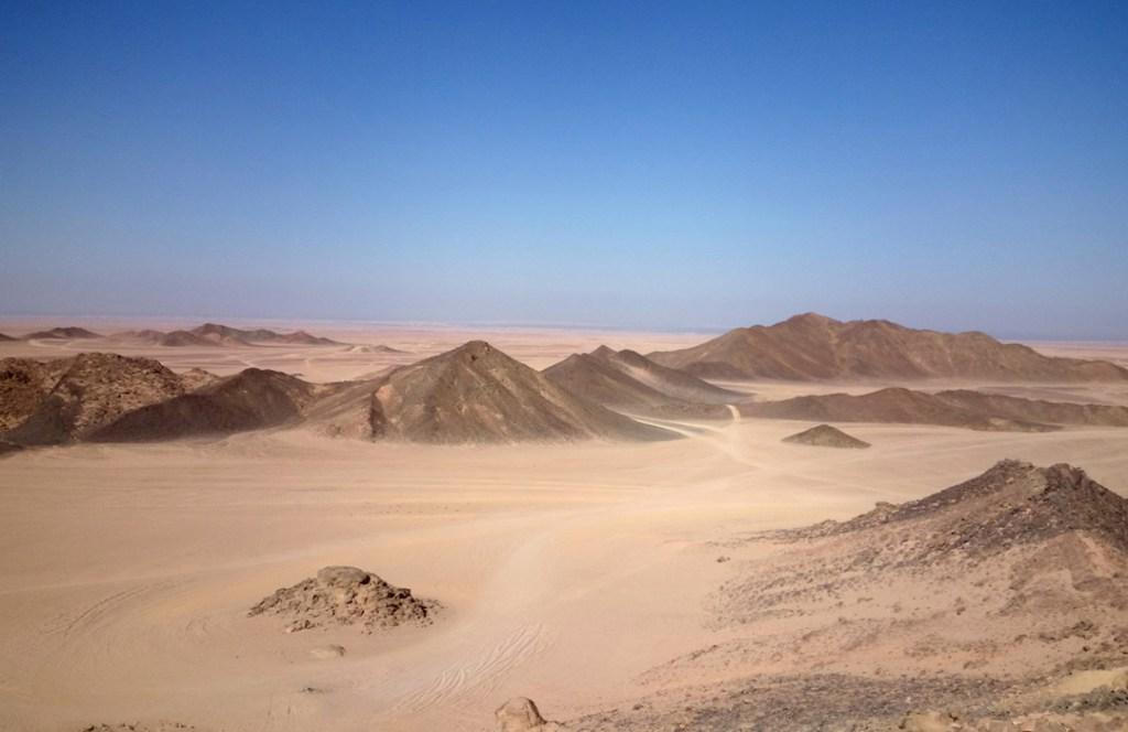 Millones de árboles han sido hallados en pleno desierto del Sahara