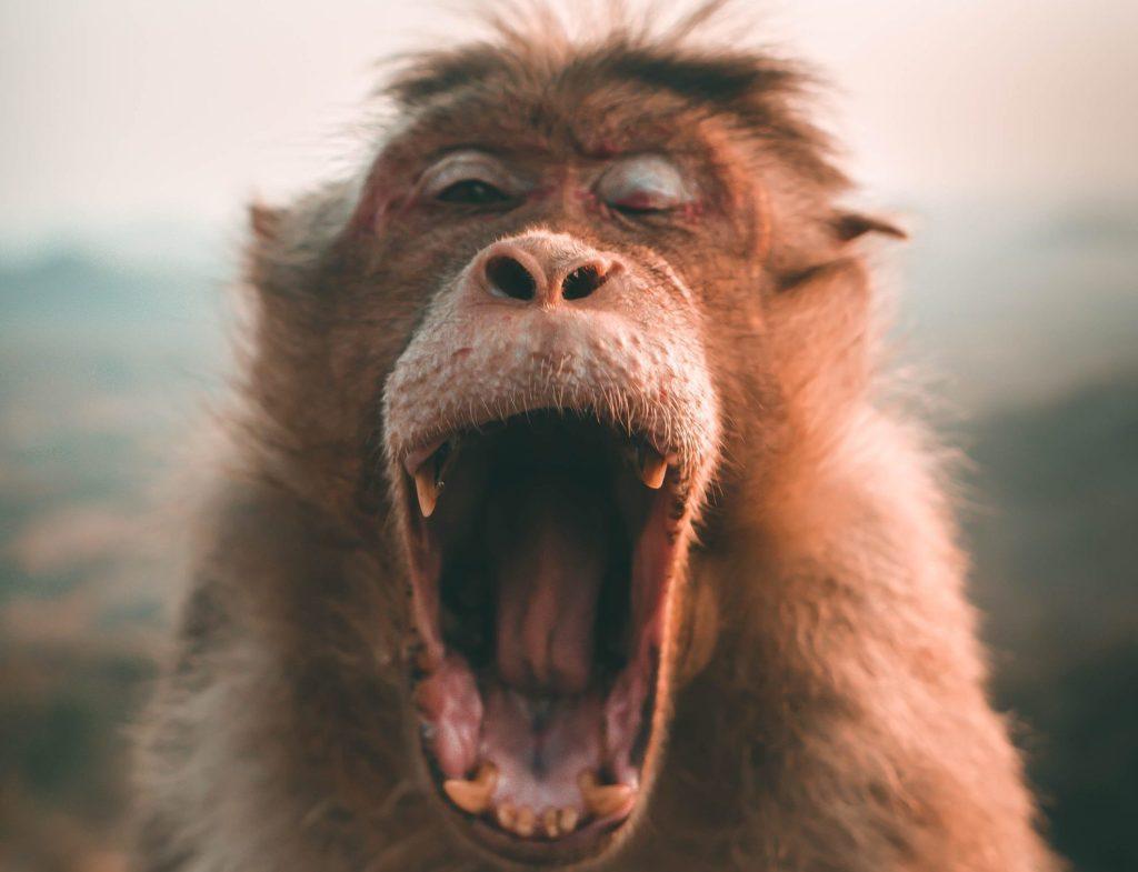 Tus dientes se ven afectados por el estrés de la pandemia más de lo que crees