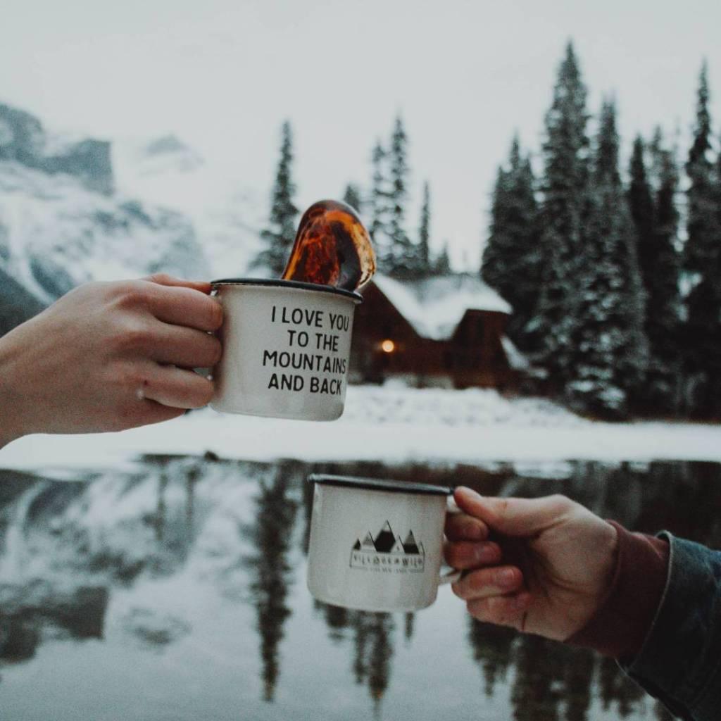 beneficios del té de pino
