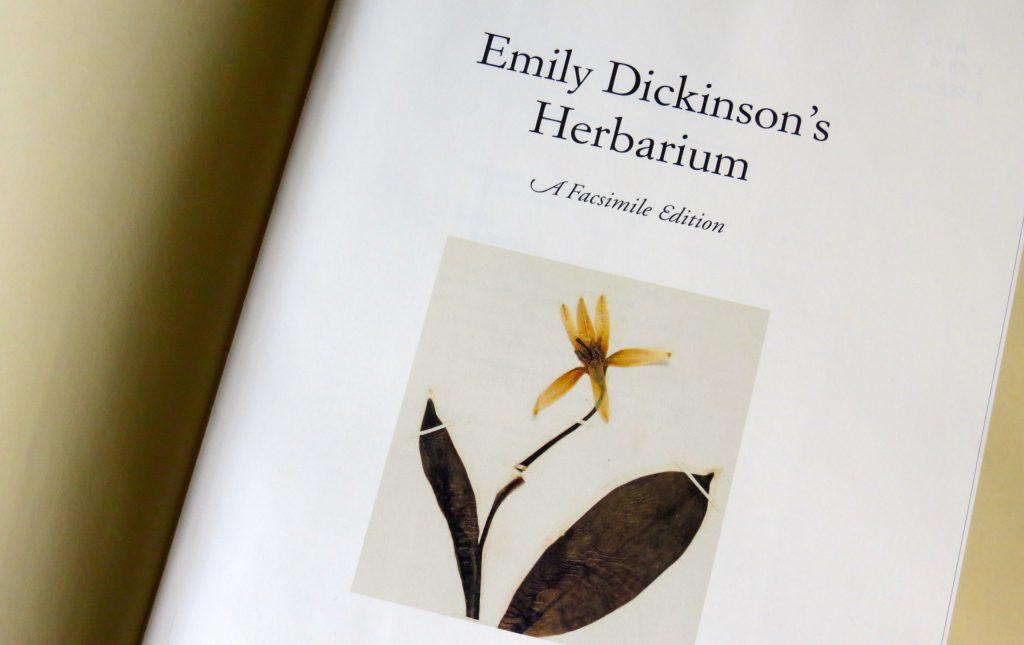 ¡Ya puedes consultar el herbario completo de la poeta Emily Dickinson!