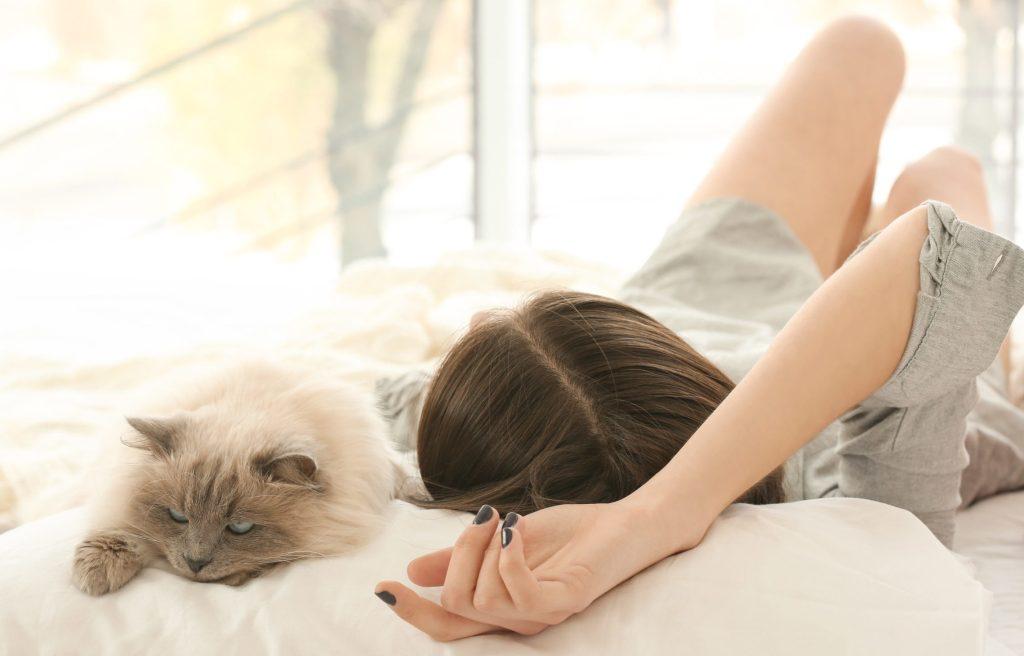 ¿Tu gato duerme sobre tu cabeza? Ésta podría ser la razón