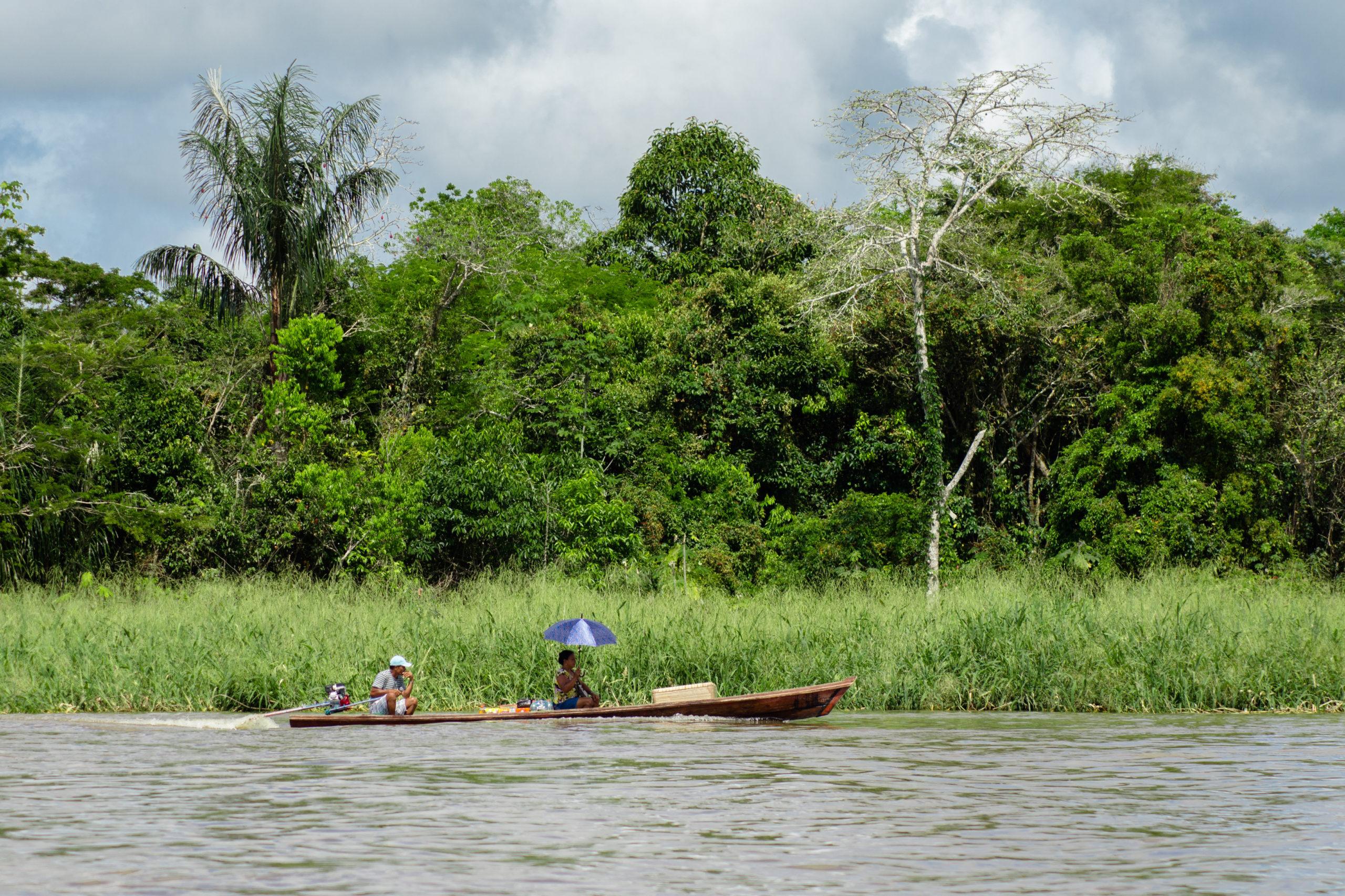 Donan 21 mil millones de pesos para proteger la Amazonia Colombiana