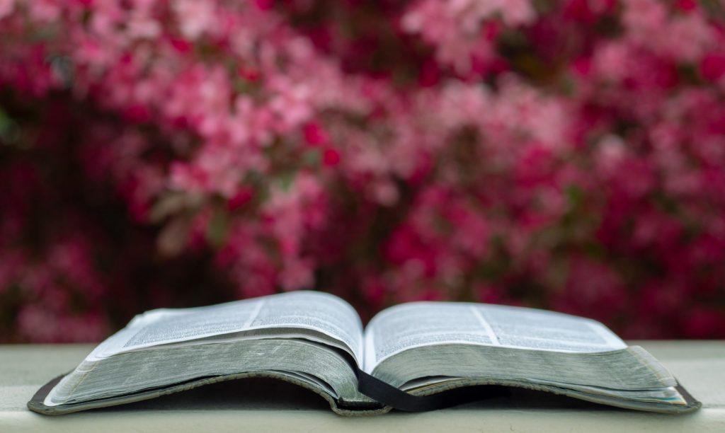 Los mejores libros para leer (y darle vuelta a la página) esta primavera