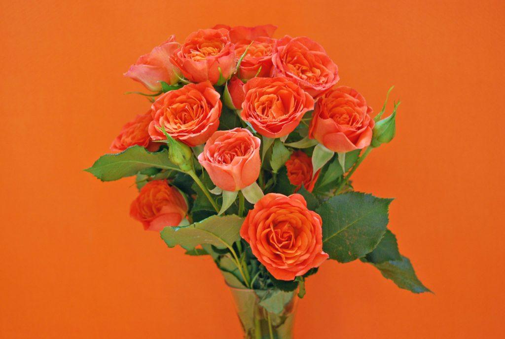Cómo mantener las flores frescas por más tiempo