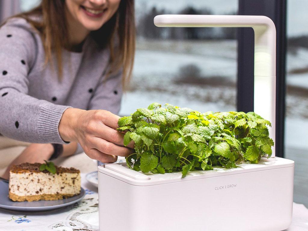 Huerta eléctrica: el futuro de los 'smart garden' ya está aquí