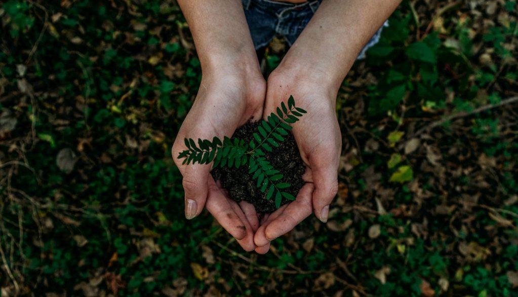 8 actividades para hacer en el Día de la Tierra