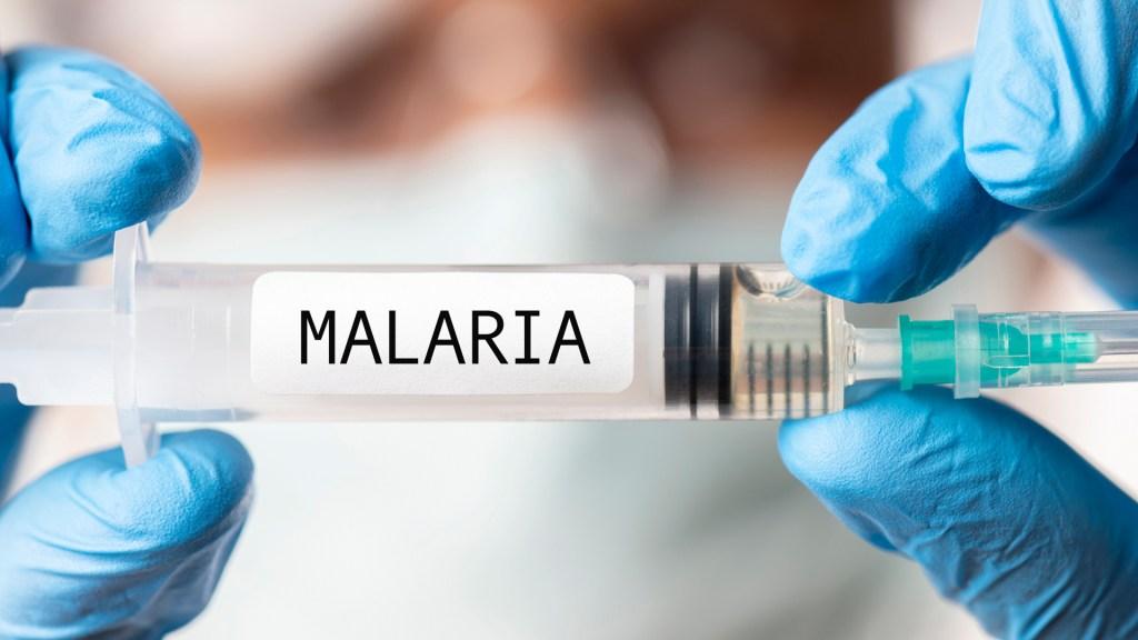 La vacuna contra la malaria, cada vez más cerca