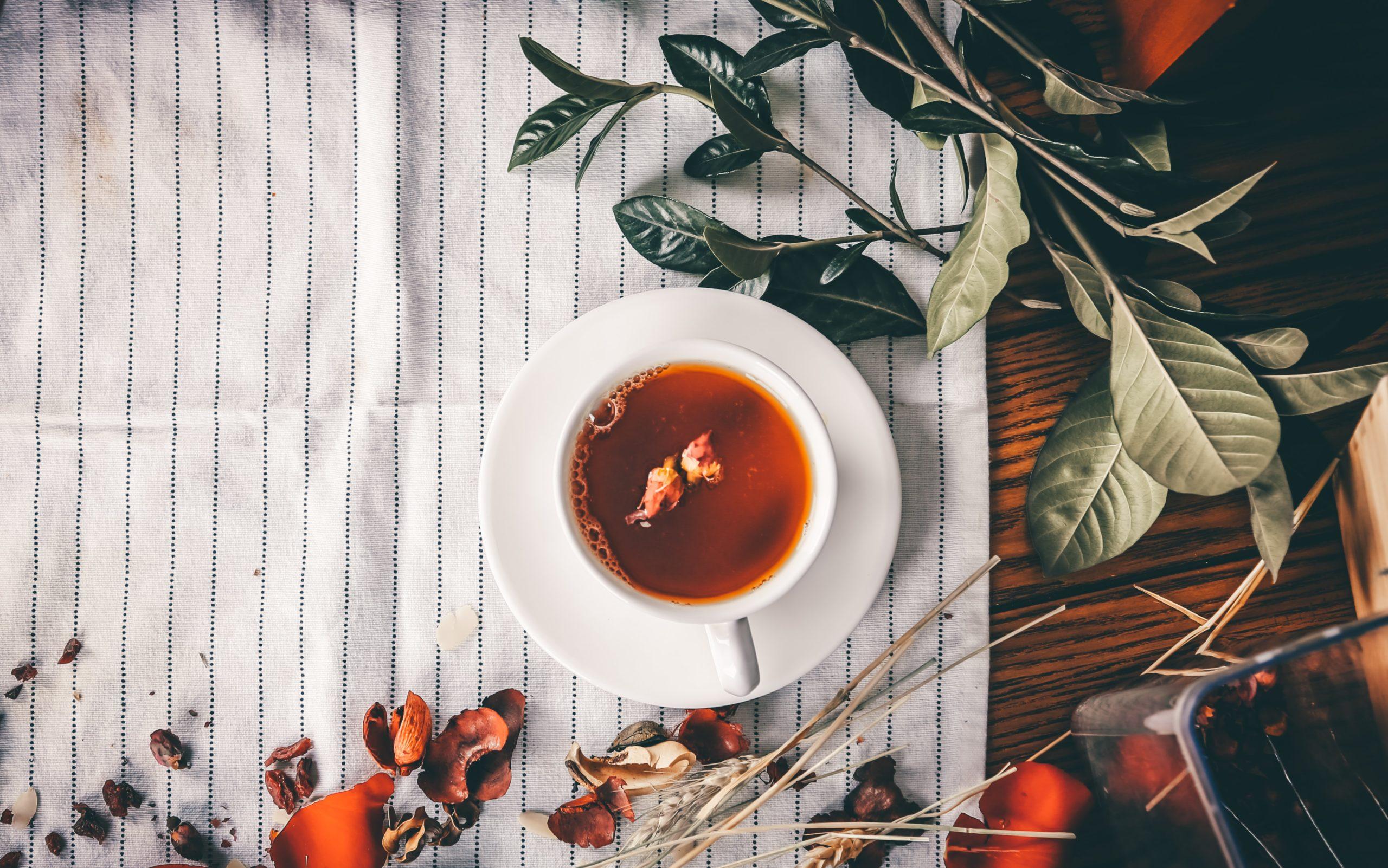 Guía definitiva del té: cuál es mejor para ti, según sus beneficios