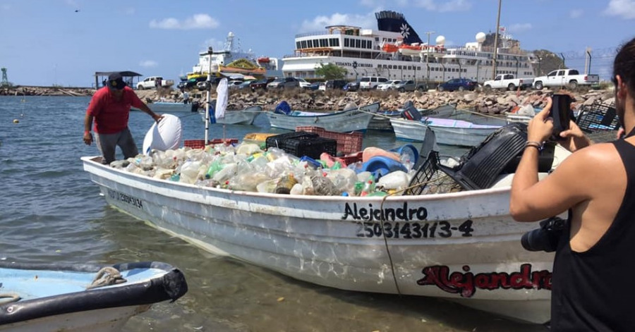 mazatlán organiza campeonato de pesca de plástico