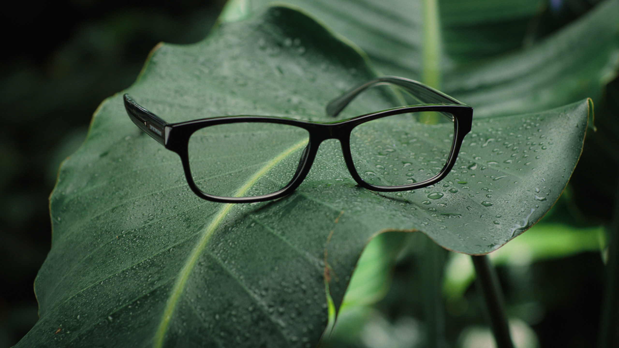 Emporio Armani lanza colección de gafas sostenibles para este verano
