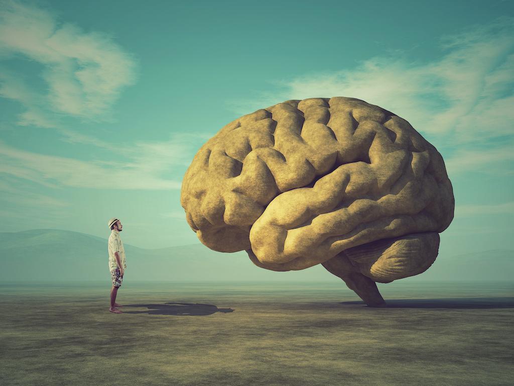 10 hábitos que debemos eliminar para mantener nuestro cerebro saludable