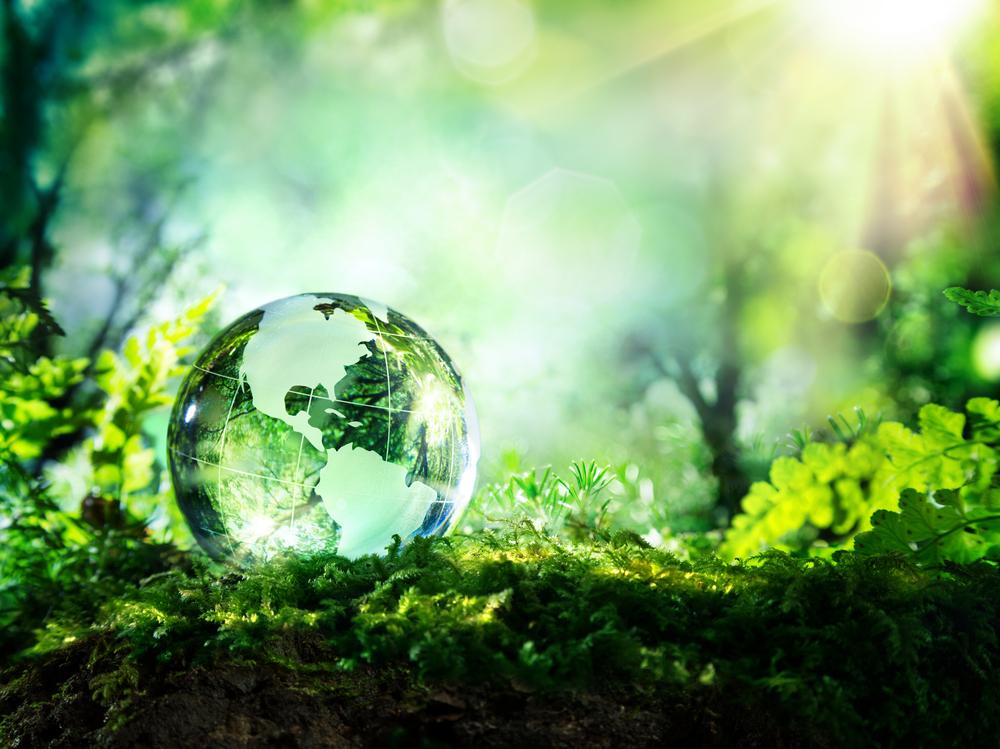5 proyectos ambientales mexicanos que mejoran al planeta