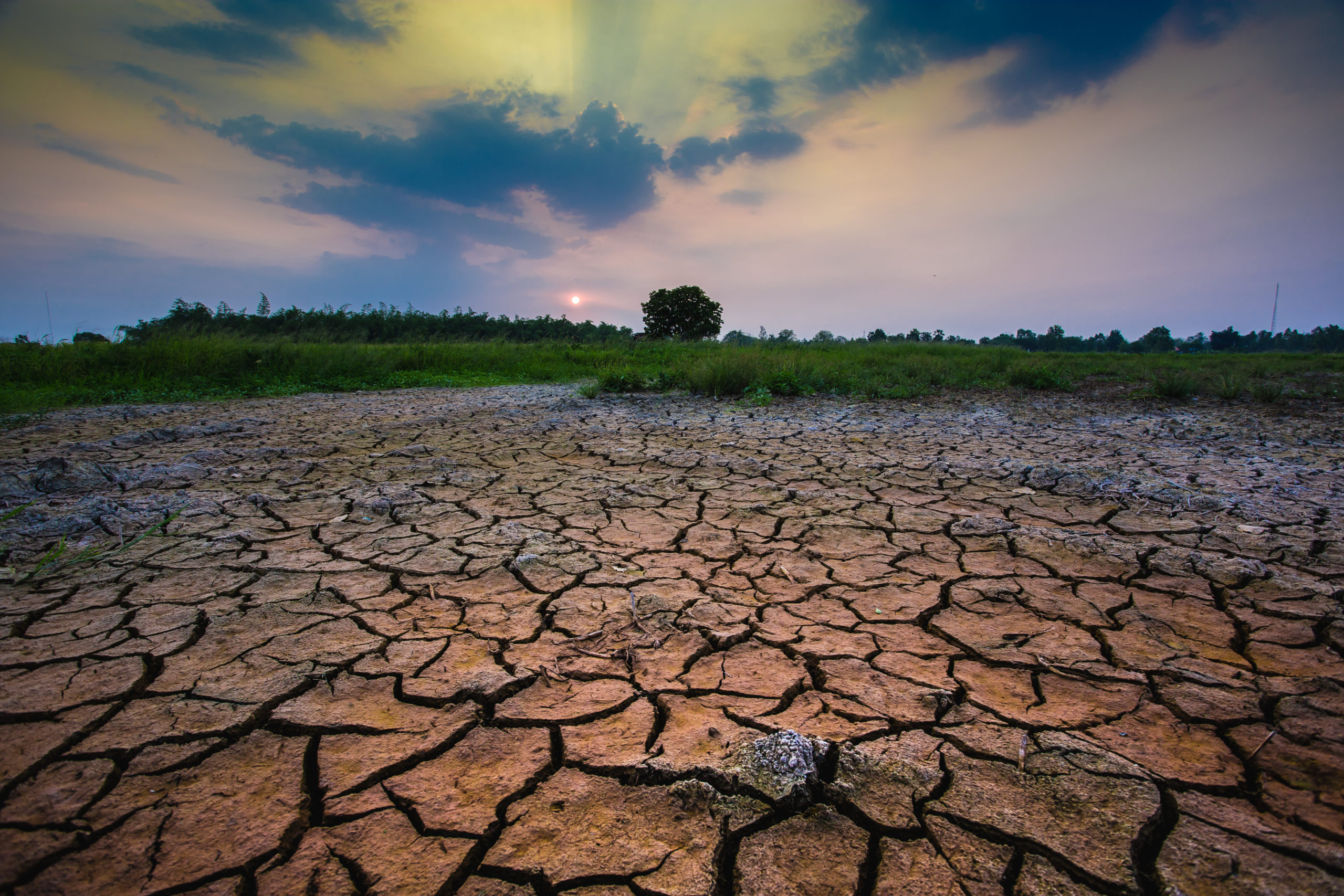 Efecto invernadero: qué es y por qué incrementa el calentamiento global