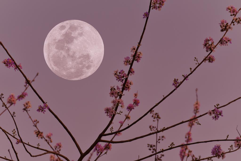 Lunas de octubre: las más bonitas del año, pero ¿cuál es la razón?