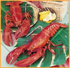 lobster-food-list-300x293.jpg