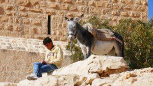 Mar Saba Kloster - Junge mit Esel