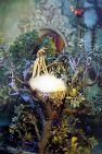 FairyCastle 3