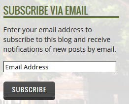 Pretty Subscribe button