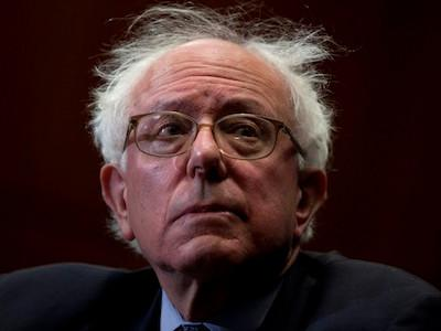 bernie-bad-hair-day