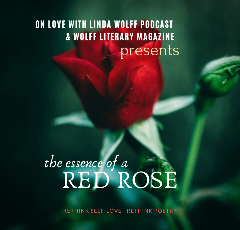 The Essence Of A Red Rose Audio Poem Wolff Poetry