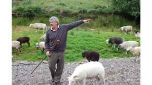 Brendan the shepard on the ring of kerry