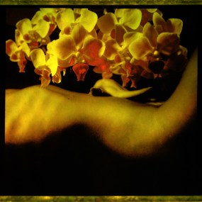 Nude&Flowers 02