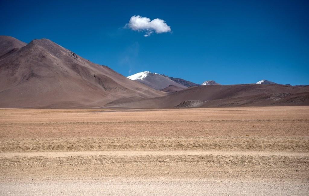 Atacama und Altiplano