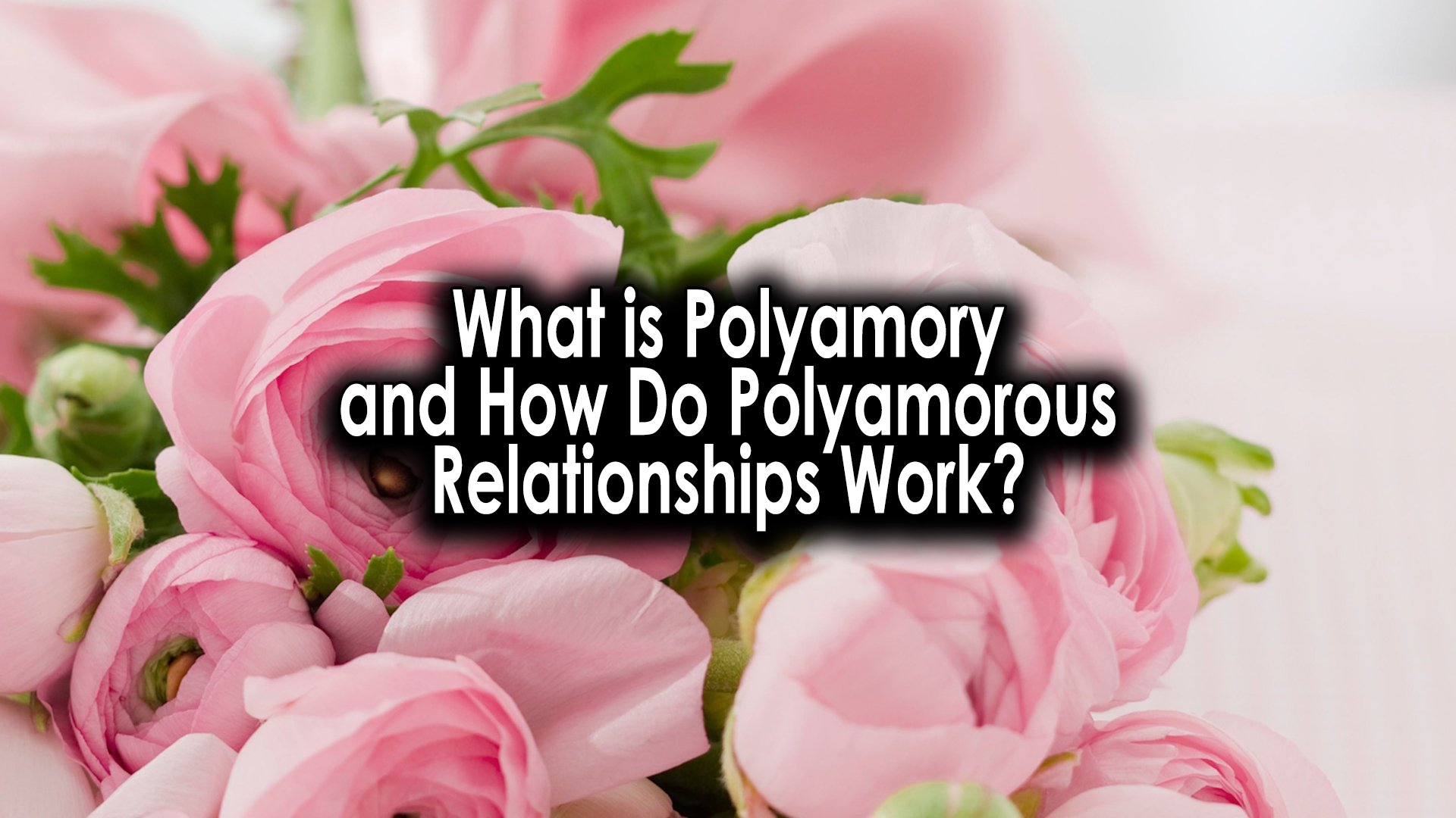 what is a polyamorous relationship polyamory what is polyamory how do relationships work lifestyle self care life love advice 2020 wolfparty3 fenxwolf dahliaxwolf wolfparty3 videos