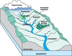 What's a Watershed?