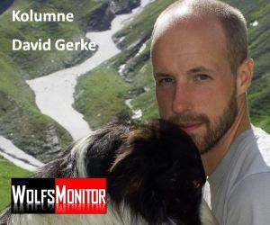 David Gerke, Präsident Gruppe Wolf Schweiz (Foto: privat)