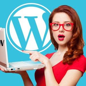 Google Web Stories WordPress eklentisi
