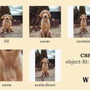En boy oranlarını bozmadan boyutlandırma [CSS]